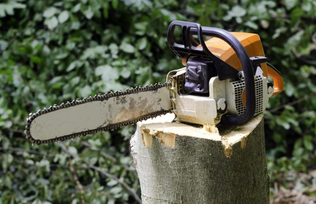 dons-tree-services-stump-grinding.jpg